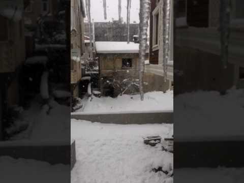 Show haber kar hala yağıyor