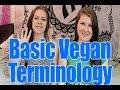 Frame from Basic Vegan Terminology