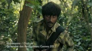 Mushrooms (Chatrak) 2011