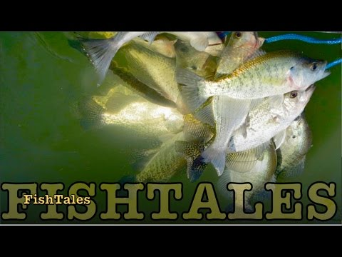 Yak it up for Yegua crappie   part one