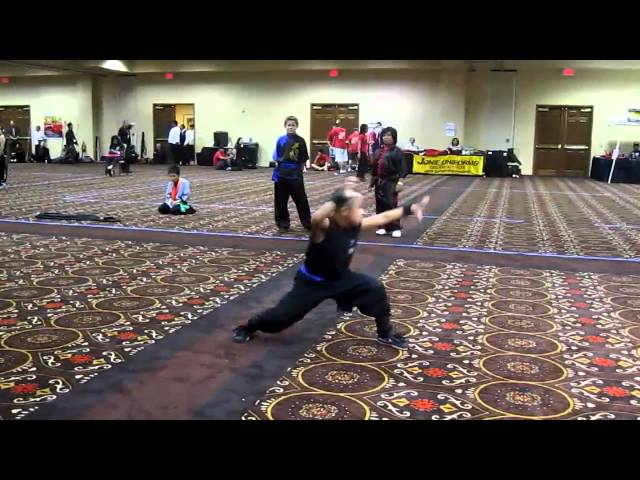 Colton /Shaolin Kungfu Chan Las Vegas/ Wuxing Bafa Quan 5 Animal Boxing