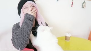 Cat Massage and Coffee  // Mycherrycrush