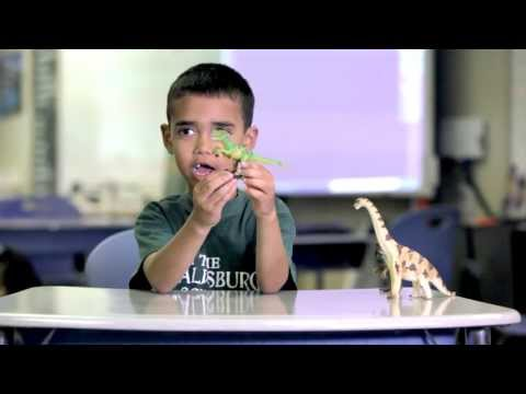 The Healdsburg School STEM program (Video 1)