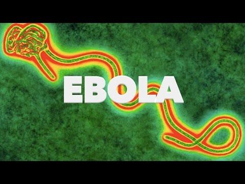 Ebola - Britain Prepares