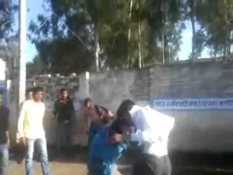 punjabi real fight