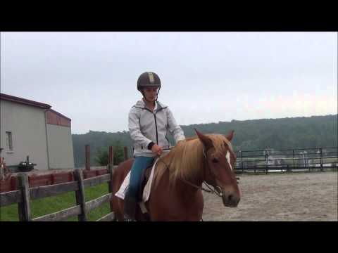 Riding a Horse Who Leans in or Gets