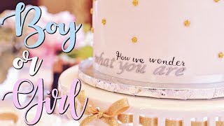 GENDER REVEAL PARTY! | BOY OR GIRL?!