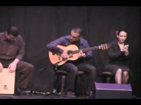 Flamenco guitarist Mehran, Yare Dabestani live