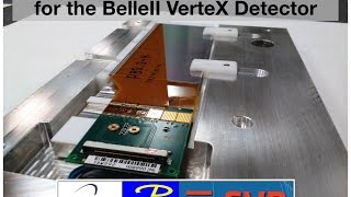 Belle II experiment - Silicon Vertex Detector Forward and Backward modules production