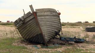 """Dungeness 'Britain's only desert"""" up for sale"""