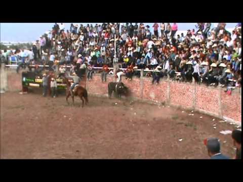 Fiesta el ojo de agua zamora michoacan 2014