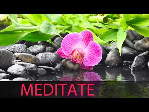 6 Hour Deep Meditation: Release Stress, Calming Music, Soothing Music, Meditation Music ☯329