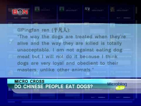 Do Chinese people eat dogs - Microblog Buzz -1208