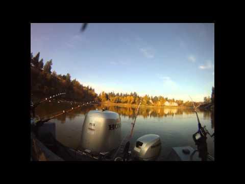 Willamette River Sturgeon Fishing GoProHD