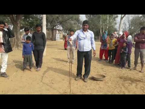 SIKAR : भैंस के पेट से निकला साढ़े 7 फीट लम्बा सांप, बेहद रोचक है पूरा मामला thumbnail