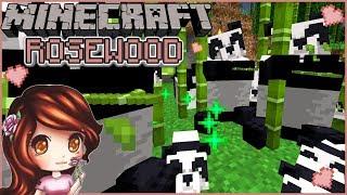 Baby Panda Sneezes 🐼🌹  Minecraft 1.14 Rosewood   Day 79