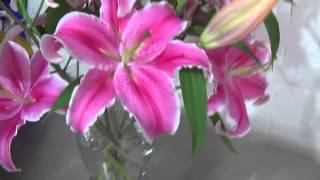 Arreglo Floral con Acapulcos