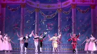Moscow Ballet 39 S Great Russian Nutcracker Waltz Of The Flowers 2013