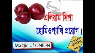 Homeopathy Bangla Software Bio-Tech Learning-Allium Cepa
