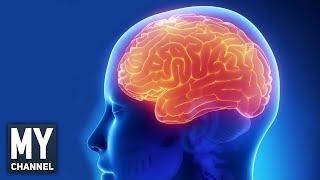 Hafızanızı Haddinden Fazla Geliştiren 10 Alıştırma