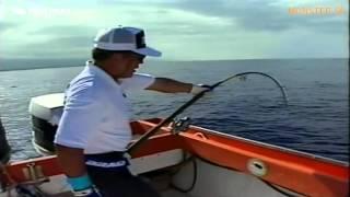 FISHERMAN Jigging classic style.mp4