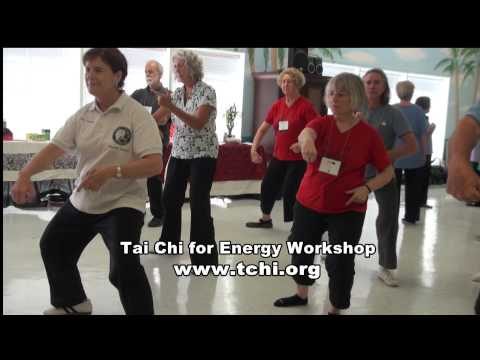 Tai Chi for Energy Instructor Training Workshop Image 1