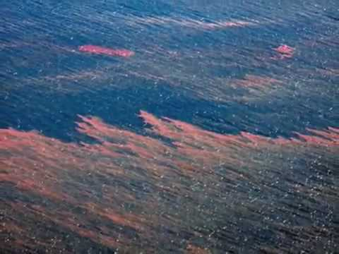 Amateur Video Of Gulf Oil Slick - Worse Than BP Admits May 7 2010