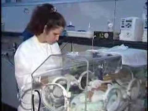 Matéria: Bebês prematuros - Thaissa Duarte