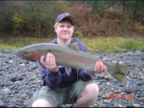 Big Steelhead on the Clearwater River!