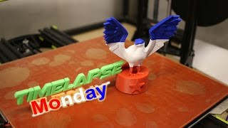 Timelapse Tuesday Bald Eagle Statue