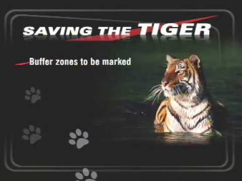 Field directors devise plan for tiger conservation
