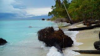 Download Lagu Aku Papua - Edo Kondologit (cover foto anak papua) Gratis STAFABAND