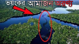 [Bangla] Amazon Jungle and  Anaconda  snake | আমাজন জঙ্গল ও অ্যানাকন্ডা সাপ  #Episode 10