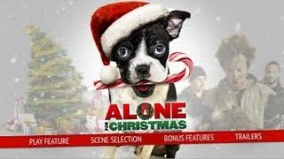 Alone for Christmas (2013) with Kim Little, Davis Cleveland, David DeLuise Movie