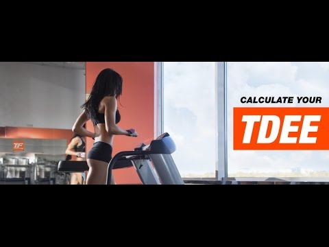 TDEE Calculator | Total Daily Energy Expenditure