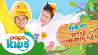 Mầm Chồi Lá Tập 98 - Vì Sao Con Chim Hót | Nhạc thiếu nhi hay cho bé | Vietnamese Kids Song