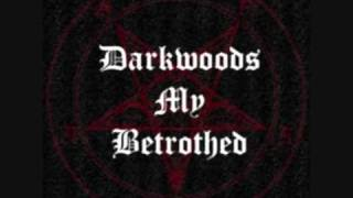 Watch Darkwoods My Betrothed Witch Hunters video