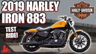 2019 Harley-Davidson Iron 883 TEST RIDE!