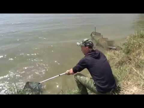 рыбалка на ставропольском канале видео