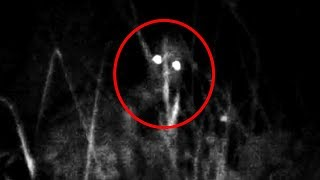 10 Scary Forest Encounters Caught by Youtubers