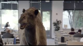 "Geico - Hump Day REMIX ""Guess What Day It Is"" Camel (FINAL) Happier than a Camel on Wednesday"