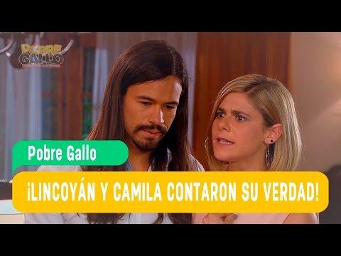 Pobre Gallo - Lincóyan y Camila Capítulo 56