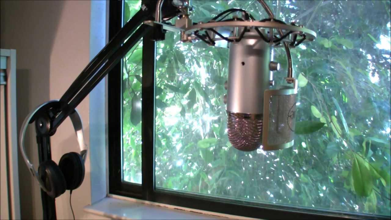Rode Psa1 Swivel Mount Studio Microphone Boom Arm Review