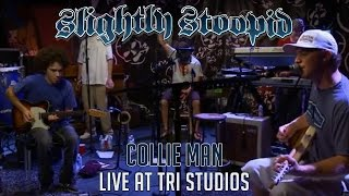 Watch Slightly Stoopid Collie Man video