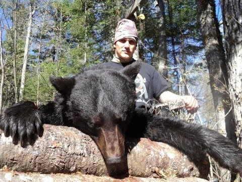 Spring Bear- Bow Hunt- New Brunswick, Canada- Upside Down Ou