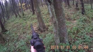 Polowanie zbiorowe Driven hunt Wild Boar Hunt Chasse au Sanglier Schwarzwild Jagd Drevjakt Vildsvin