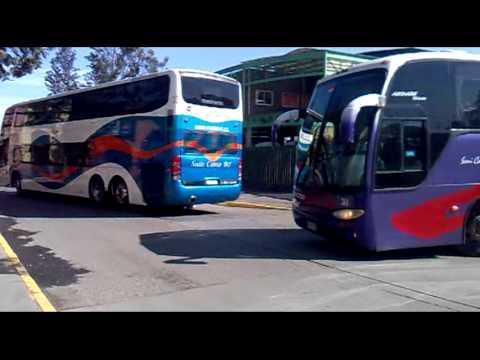 buses chilenos  2012