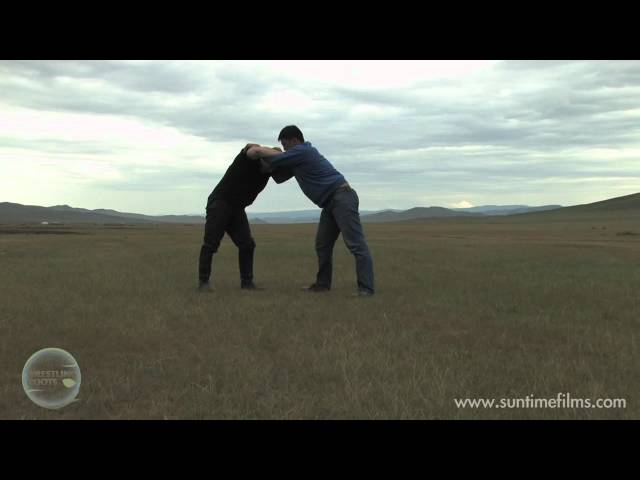 Mongolian Bukh in the Countryside