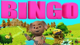 Bingo Dog Song Nursery Rhyme With Lyrics - Animation For Children
