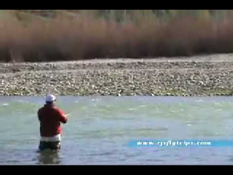 Fly Fishing Yuba and Feather Rivers in Northern California